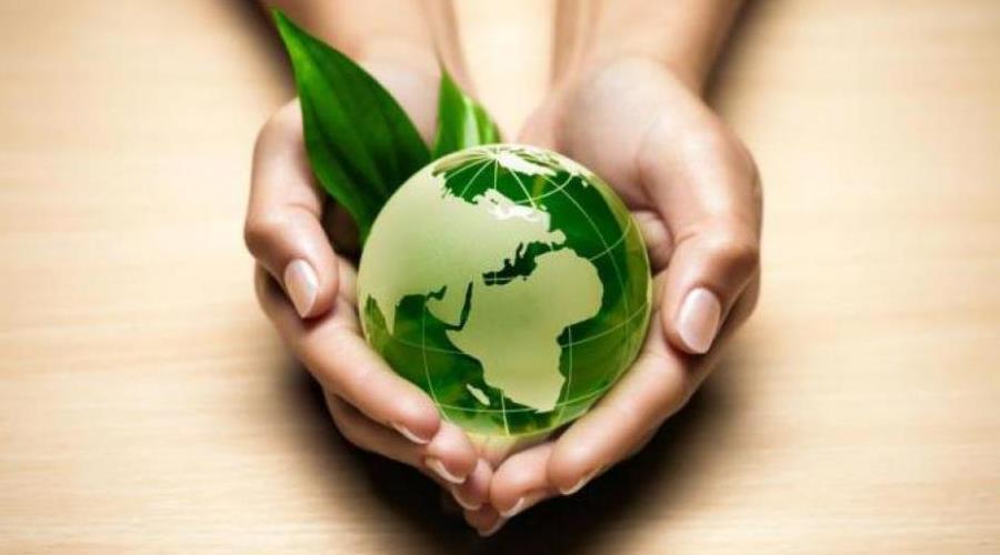 ekology3